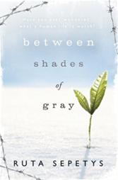 between the shades of grey